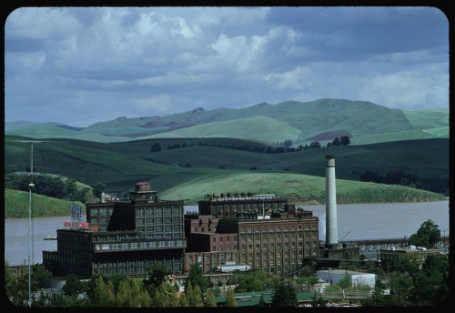 ID: P09715. 1958 Apr. 1. C & H sugar refinery Crockett, CA. Retrieved from: http://www.dlib.indiana.edu/collections/cushman/
